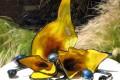 Abstract Blown Glass Sunflower