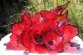 Scarlet Glass Sculptures